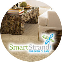 SmartStrand Forever Clean Carpet